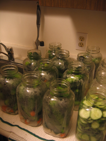 I made 2 jars of sliced pickles and 12 jars of regular pickles. Depends on the size of cucumbers you buy.