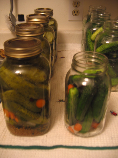 After the pickles have been in the oven, they change colour immediately. The ones on the left have already been sealed in the oven.