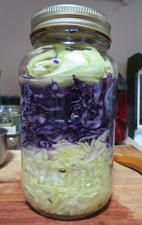 Crazy Sauerkraut Lady