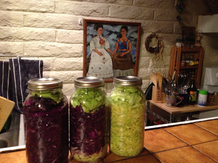 1.5 *gallons* of kraut at the ready... sorry, not enough to share!