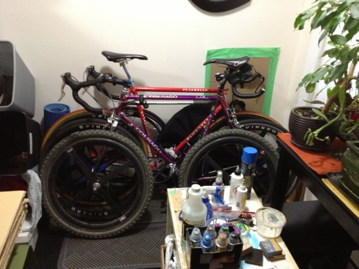 Welcome to our bike room slash art studio slash plant storage space! Yeesh...